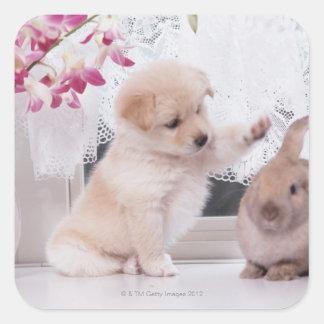 Conejo del perrito y del oído del Lop Calcomania Cuadrada Personalizada