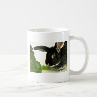 Conejo del zorro plateado taza de café