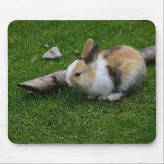 Conejo dulce del bebé tapetes de ratón