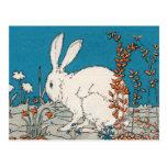 Conejo elegante del blanco del vintage tarjetas postales