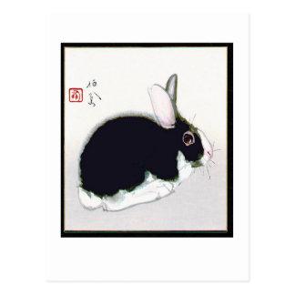 Conejo en blanco y negro tarjeta postal