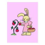 Conejo en camisetas y regalos del jardín del tomat postales