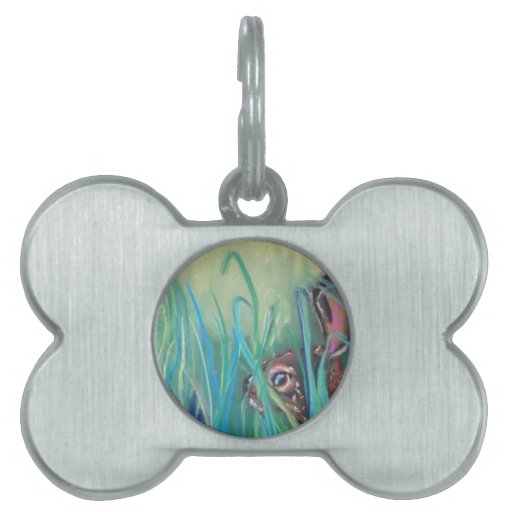 conejo en hierba placas de mascota