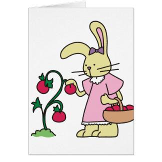 Conejo en jardín del tomate felicitaciones