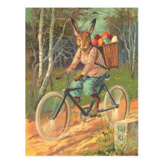 ¡Conejo en su bicicleta que entrega los huevos Postales