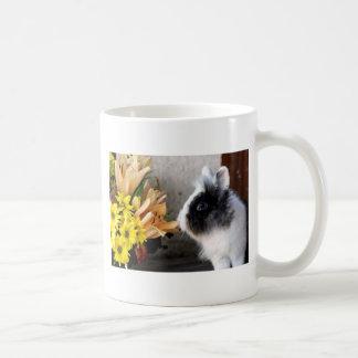 Conejo enano blanco y negro taza de café