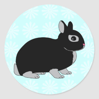 Conejo enano de Netherland Pegatina Redonda
