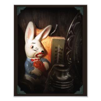 Conejo espeluznante fotografía