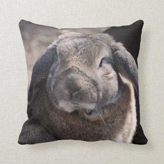 Conejo espigado del Lop Cojin