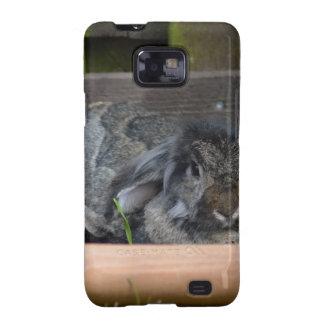 Conejo espigado del Lop Galaxy S2 Fundas