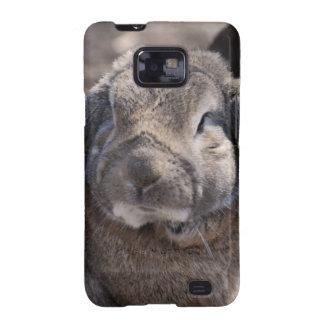 Conejo espigado del Lop Galaxy SII Fundas