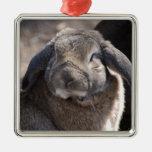 Conejo espigado del Lop Ornamentos De Navidad