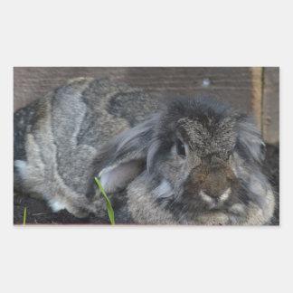 Conejo espigado del Lop Rectangular Altavoz