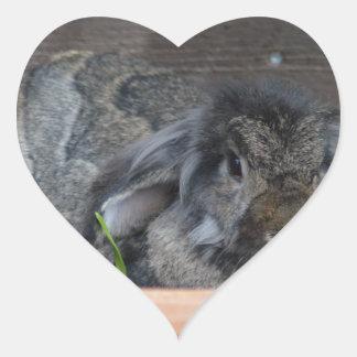 Conejo espigado del Lop Calcomanía De Corazón Personalizadas
