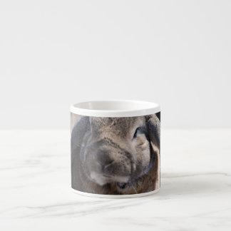 Conejo espigado del Lop Taza Espresso