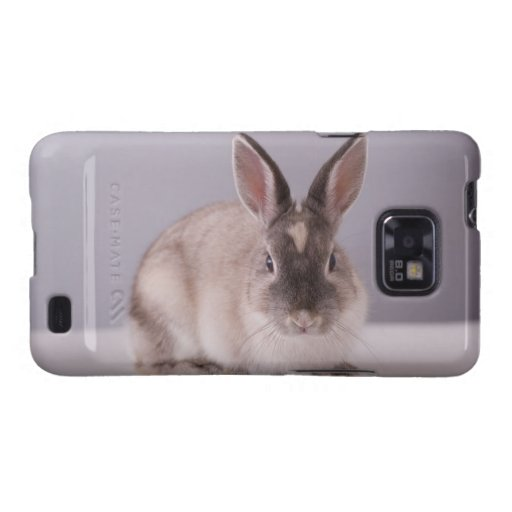 conejo, fondo simple, animal, tabla blanca, galaxy s2 fundas