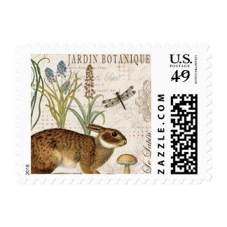 conejo francés del vintage moderno en el jardín sellos postales