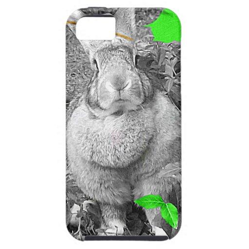 Conejo gigante flamenco B y W con las hojas verdes iPhone 5 Fundas