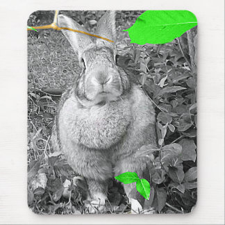 Conejo gigante flamenco B y W con las hojas verdes Alfombrilla De Ratón