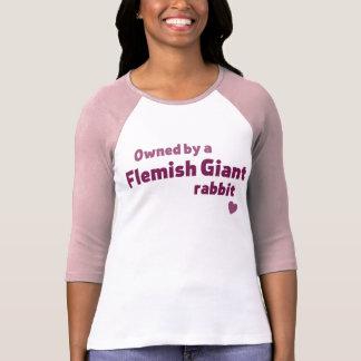 Conejo gigante flamenco camisas