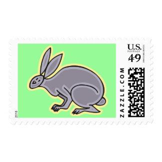 Conejo gris envio