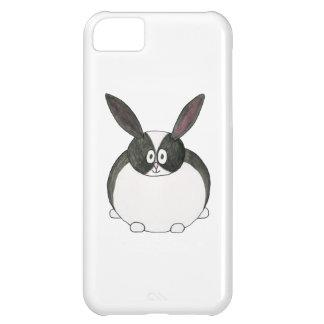 Conejo holandés blanco y negro