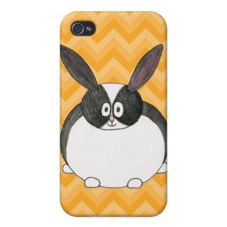 Conejo holandés blanco y negro iPhone 4 coberturas