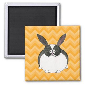 Conejo holandés blanco y negro imán