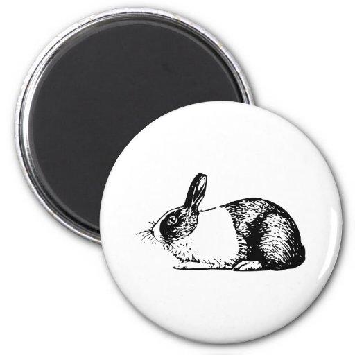 Conejo Imán Para Frigorifico