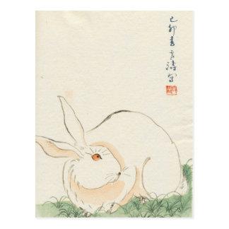 Conejo japonés tarjeta postal