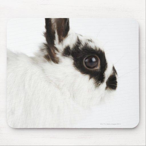 Conejo lanoso del jersey alfombrillas de ratón