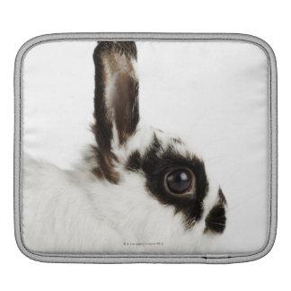 Conejo lanoso del jersey funda para iPads