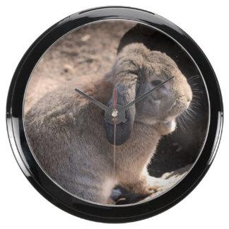 Conejo lindo reloj aqua clock