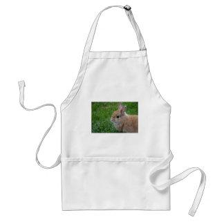 Conejo lindo delantal