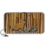Conejo lindo en el fondo de bambú altavoz