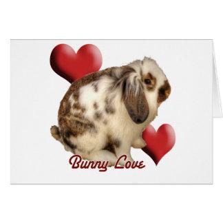 Conejo Mini-Lop Felicitación