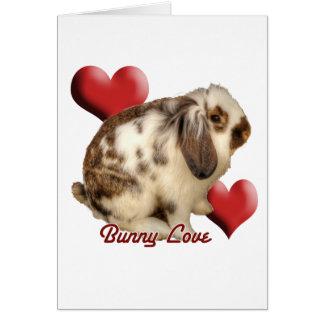 Conejo Mini-Lop Felicitacion