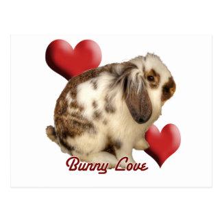 Conejo Mini-Lop Tarjeta Postal