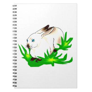 Conejo observado azul californiano en grass.png ve libreta