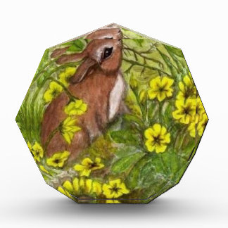 Conejo - Pascua feliz