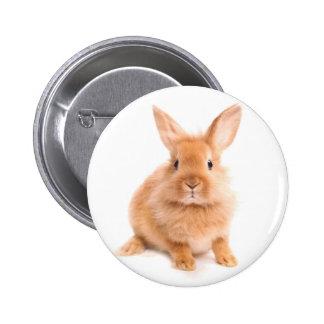 Conejo Pin Redondo De 2 Pulgadas