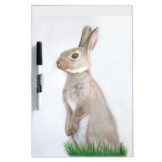 Conejo Pizarras Blancas De Calidad