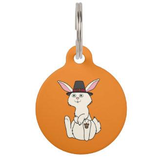 Conejo poner crema de la acción de gracias con el placas de mascota