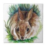 Conejo que oculta en la hierba - lápiz de la acuar azulejos