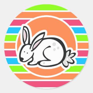 Conejo; Rayas rosadas anaranjadas de neón del Pegatinas Redondas