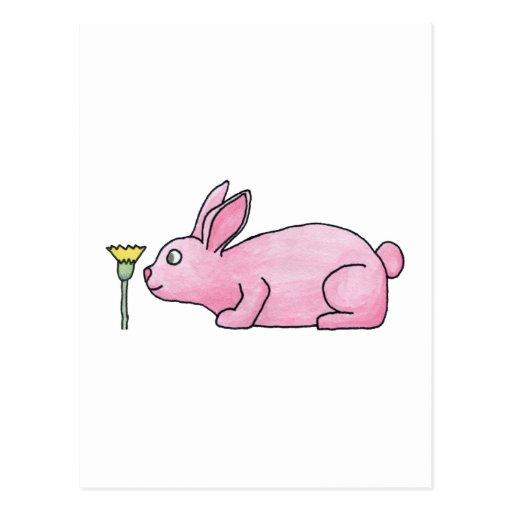 Conejo rosado con la flor postal