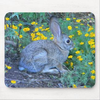Conejo salvaje en flores amarillas tapetes de ratón
