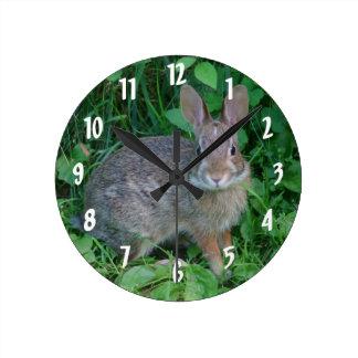 Conejo salvaje lindo de Brown Reloj