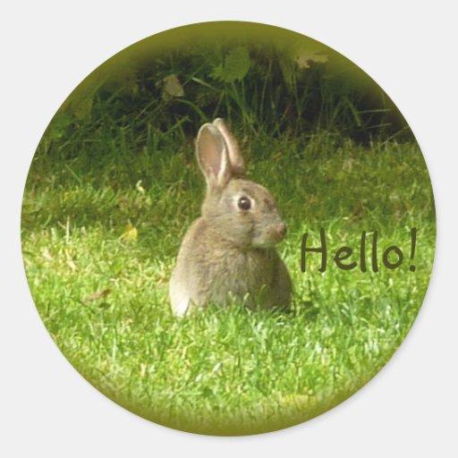 Conejo salvaje pegatina redonda