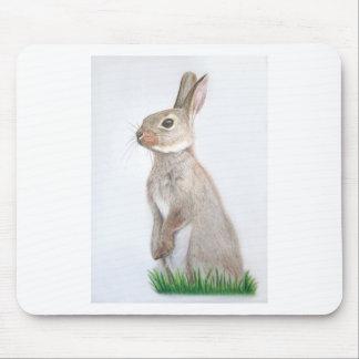 Conejo Alfombrilla De Ratón